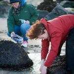 SeaweedWalk_004